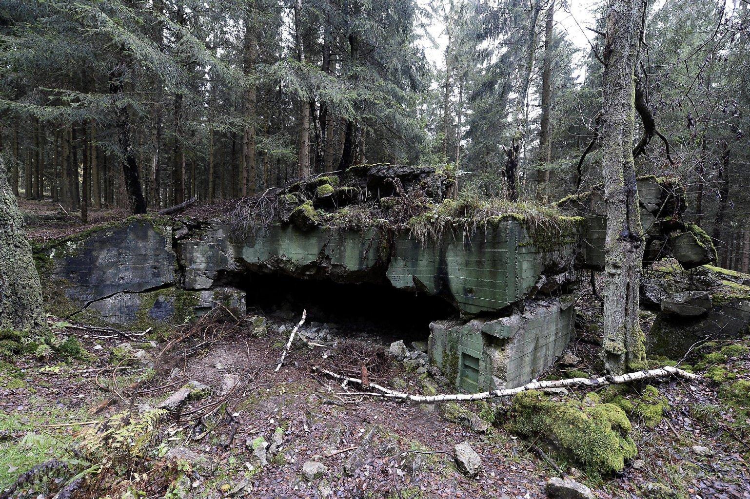 The Hürtgen Forest Today (Source Unknown)